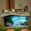 ตู้ปลาอโรมา thumbnail 2