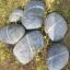 หมอนหินอ่อน thumbnail 4