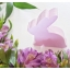 Wooden Bunny - Spring Beauty thumbnail 12
