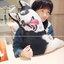 ตุ๊กตาหมอนสุนัขไซบีเรียนฮัสกี้ thumbnail 1