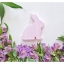 Wooden Bunny - Spring Beauty thumbnail 10