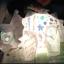 โคมไฟไดโนเสาร์ thumbnail 4