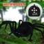 แมงมุมบังคับวิทยุ thumbnail 7