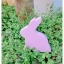 Wooden Bunny - Spring Beauty thumbnail 4