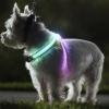 ปลอกคอสุนัข LED