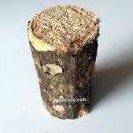 ท่อนไม้ผุ ขนาด SS (เส้นผ่านศูนย์กลาง 5 ซม.) ไม้ผุชุดนี้มีระกับความผุมากเป็นพิเศษ มีจำนวนจำกัด