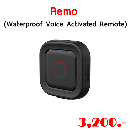 Remo (Waterproof Voice Activated Remote)