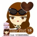 สี Copper Brown 5B