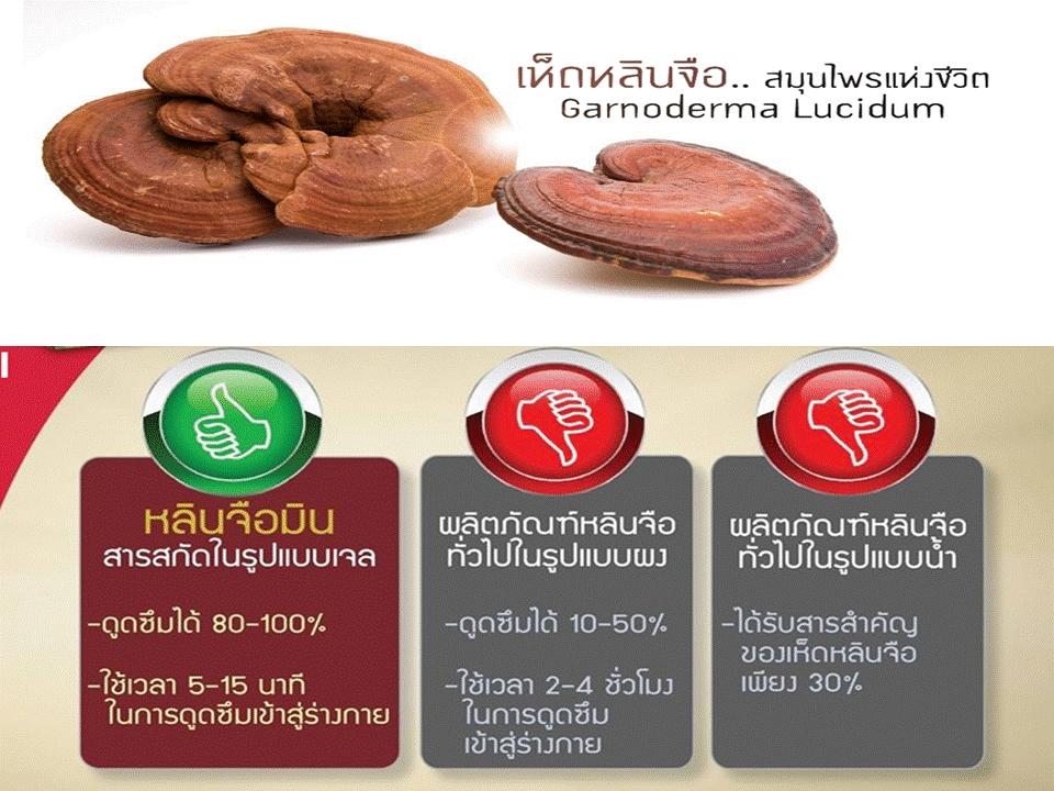นวัตกรรมเจล เห็ดหลินจือแดงสกัด หลินจือมิน นำเข้าจากเกาหลี หลินจือมิน เห็ดหลินจือแดงในรูปแบบซอฟเจล แตกต่างจากเห็ดหลินจืออื่นอย่างไร #ผลิตภัณฑ์หลินจือแดงสกัดตราหลินจือมินที่สารสกัดอยู่ในรูปแบบของเจล ซึ่งทำให้ร่างกายสามารถดูดซึมได้ถึง 80–100%และใช้เวลาเพียง 5–15 นาทีเท่านั้นในการดูดซึมเข้าร่างกายทำให้ได้รับปริมาณสารสกัดจากเห็ดหลินจือได้เต็มที่ ซึ่งแตกต่างจากที่อื่นซึ่งดูดซึมได้น้อยเพียง 10–50% เท่านั้นและใช้เวลา 2-4 ชั่วโมงในการดูดซึมเข้าร่างกาย *ผลลัพธ์ที่ได้อาจแตกต่างตามสภาพร่างกายของแต่ละบุคคล