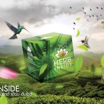 HERB INSIDE เฮิร์บ อินไซด์ ผลิตภัณฑ์หน้าใส จากสมุนไพรธรรมชาติ เห็นผลเร็ว ปลอดภัย 100%