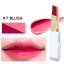 novo Double color Lipstick ลิปสติก Two Tone เนื้อครีมเนียนละเอียด ไล่ระดับโทนสี สวยสไตล์เกาหลี thumbnail 31