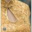 รหัส ชุดกี่เพ้า : KPS001 ชุดกี่เพ้าประยุกต์ สวยๆ แบบสั้น สีทอง งานปักดิ้นทอง คัตติ้งเป๊ะมาก ใส่ออกงาน ไปงานแต่งงาน ใส่เป็นชุดพิธีกร ชุดเพื่อนเจ้าสาว ชุดถ่ายพรีเวดดิ้ง ชุดยกน้ำชา หรือ ใส่ ชุดกี่เพ้าแต่งงาน สวยมากๆ ค่ะ thumbnail 4