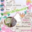 Congasia DETOX by ABJ คองกาเซีย ดีท็อกซ์ น้ำหนักลด หน้าใส ลำไส้สะอาด thumbnail 16
