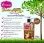 Body White Booster ginger & Phyto Sc Lotion by Faii cawaii โลชั่นขิง สมุนไพรไทย ใช้แล้วครั้งแรก ประทับใจ ที่สุด thumbnail 5