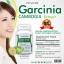 The Nature Garcinia Extract เดอะ เนเจอร์ สารสกัดจากผลส้มแขก thumbnail 5