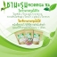 Moringa Tea by Healthy Tea Shop ชามะรุมเฮลตี้ ซองสีน้ำตาล thumbnail 9