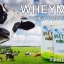 WHEYMIXX WHEY PROTEIN เวย์มิกซ์ เวย์โปรตีน รสอร่อย คุณภาพสูง วัตถุดิบธรรมชาติ ปราศจากฮอร์โมน thumbnail 2