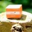 SOMSAI Sunscreen กันแดดส้มใส นวัตกรรมใหม่สำหรับครีมกันแดด เนื้อซิลิโคนใยไหม SPF40PA+++ thumbnail 3