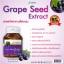 Morikami Laboratories Grape Seed Extract โมริคามิ ลาบอราทอรีส์ สารสกัดจากเมล็ดองุ่น thumbnail 10