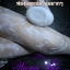 Wang Bee Anti Cellulite Soap สบู่ วังบี แอนตี้ เซลลูไลท์ โซฟ thumbnail 16