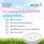 Merci Bulgarian Yogurt Whitening Cream Mask เมอร์ซี่ บัลแกเรียน โยเกิร์ต มาส์ค thumbnail 10
