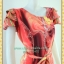 1993เสื้อผ้าคนอ้วน เสื้อผ้าแฟชั่นโมเดิร์นกราฟฟิคสไตล์ออกงานแขนระบายหลายชั้นปิดไหล่คอกลมคาดโบว์ thumbnail 3