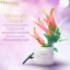 Gg Skincare Booster Night Cream by Nongnaka จีจี สกินแคร์ บูสเตอร์ ไนท์ ครีม ผิวหน้าใสใน 1 คืน thumbnail 11