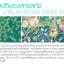 sena Marine Plankton Water Serum Concentrate เซน่า มารีน แพลงก์ตอน วอเตอร์ เซรั่ม คอนเซนเทรท น้ำตบแพลงก์ตอน ให้ความเนียนนุ่ม ผิวหน้าเต่งตึง thumbnail 4