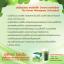 Verena The Secret Wheatgrass Chlorophyll เวอรีน่า เดอะซีเครท วีทกราส คลอโรฟิลล์ thumbnail 7