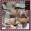 Angela Body Wax แผ่นแว๊กซ์ขนนางฟ้า แองเจล่า บอดี้ แว๊กซ์ thumbnail 16