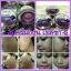 Belleza Grape Cream เบลเลซ่า ครีมองุ่น thumbnail 5