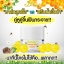B'secret Forest Honey Bee Cream บี ซีเคร็ท ฟอเรสท์ ฮันนี่ บี ครีม ครีมน้ำผึ้งป่า หน้าเงา หน้าใส ไร้สิว จบทุกปัญหาผิวได้ในกระปุกเดียว thumbnail 5