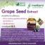 Morikami Laboratories Grape Seed Extract โมริคามิ ลาบอราทอรีส์ สารสกัดจากเมล็ดองุ่น thumbnail 7