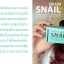 Donut Serum Snail โดนัท เซรั่ม สเนล เซรั่มเมือกหอยทากจากสเปน thumbnail 9