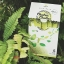 Chular Chular DETOX by KALOW ชูล่า ชูล่า ดีท็อกซ์ ใยอาหารจากธรรมชาติ 100% ลำไส้สะอาด ปราศจากสารพิษ สุขภาพดีจากภายใน สู่ภายนอก thumbnail 17